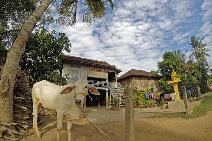 10-experiencias-autenticas-viaje-camboya-isla-de-seda