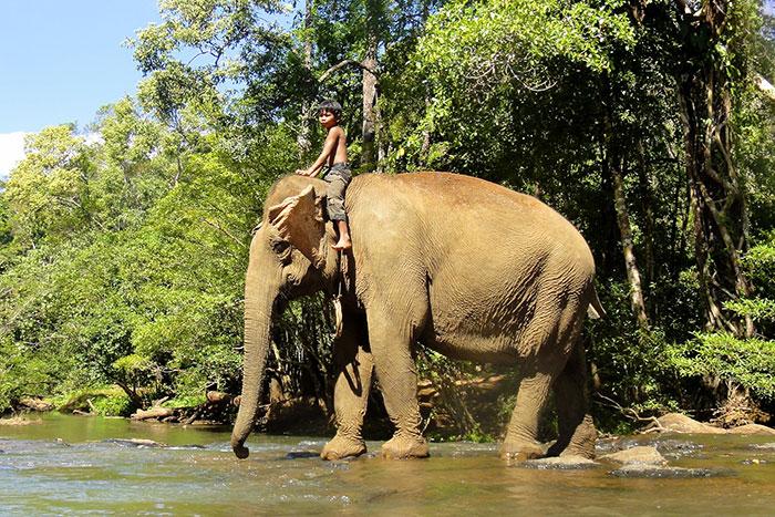 10-experiencias-autenticas-viaje-camboya-mondolkiri