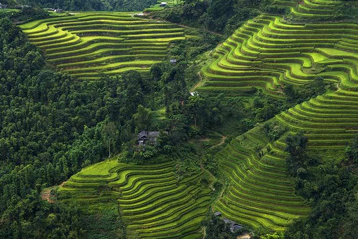 Viajar a Vietnam en baja temporada hoang su phi