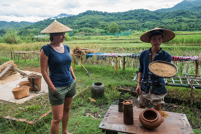 Cultivo de arroz en Luang Prabang