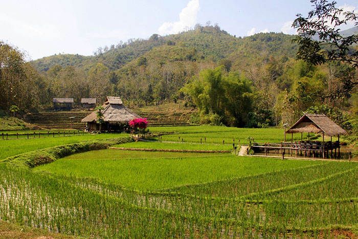 Alojamiento en Kamu Logde Luang prabang