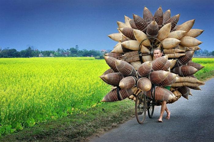 El bambu en la cultura vietnamita