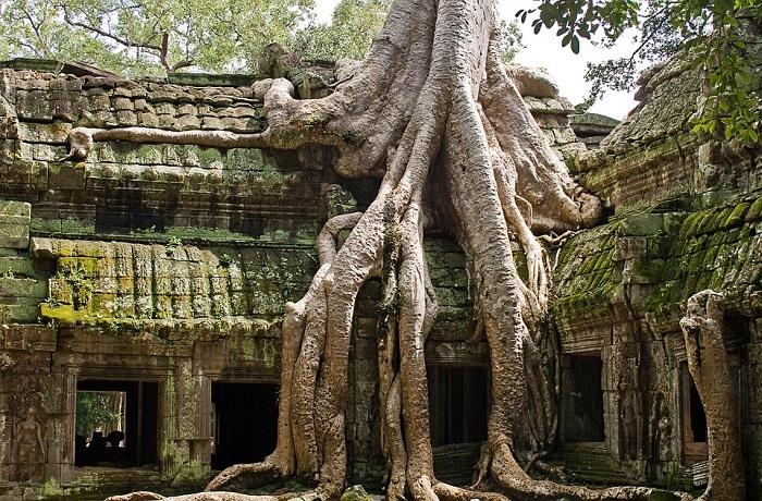 Templo Ta Prohm en Angkor