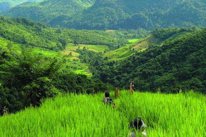 Caminata en Nong Khiaw Laos