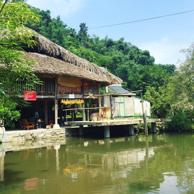 Casa sobre pilotes en el pueblo Tha en Ha Giang