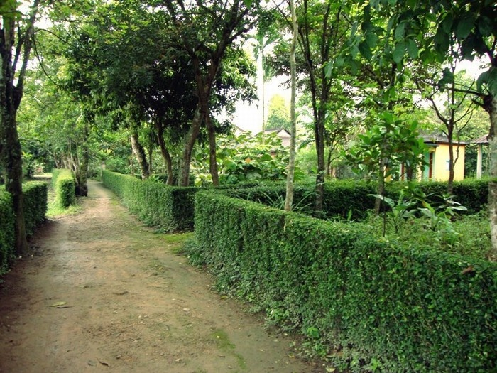 Cercos de las casas en el pueblo Phuoc Tich en Hue