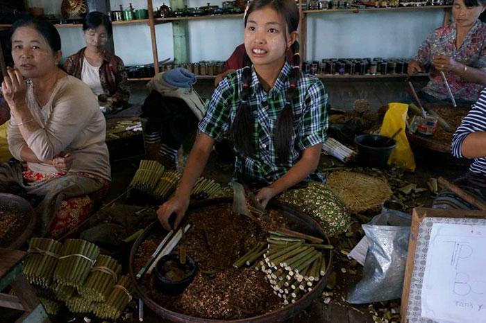 Fabricacion de cigarros birmanos en el lago Inle Myanmar