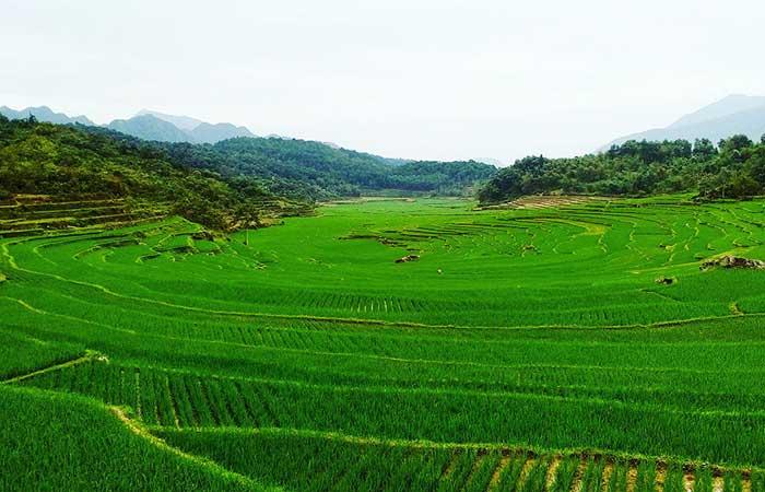 Tour de Vietnam 15 dias Pu Luong