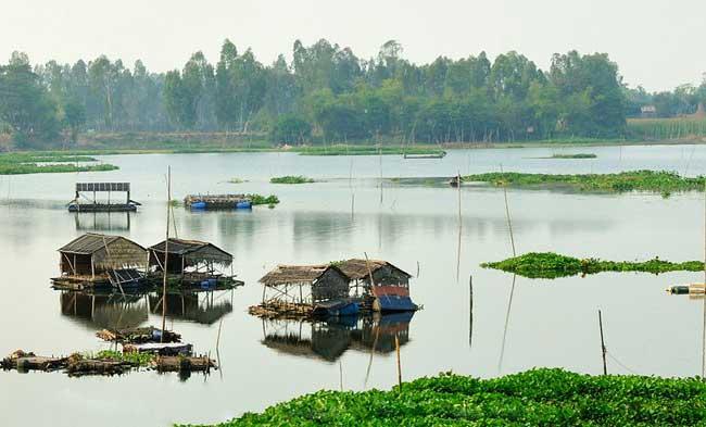 Casas flotantes en el delta del Mekong Vietnam