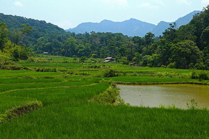 Campo de DIen BIen Phu