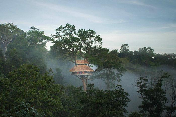 Gibbon experience en Laos