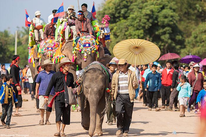 Festival de elefantes en Laos