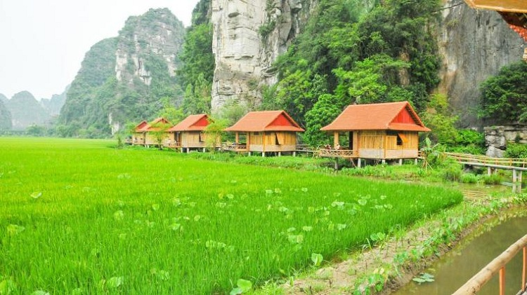 Hoteles en Ninh Binh Lotus Field Homestay