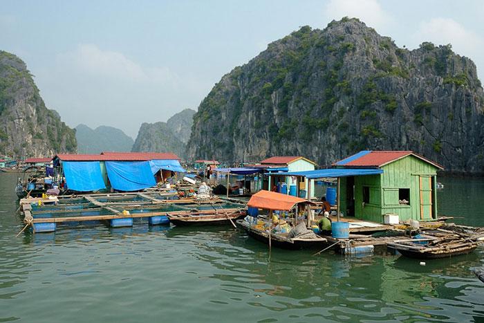 Imperdibles en la isla de Cat Ba pueblo de pescadores