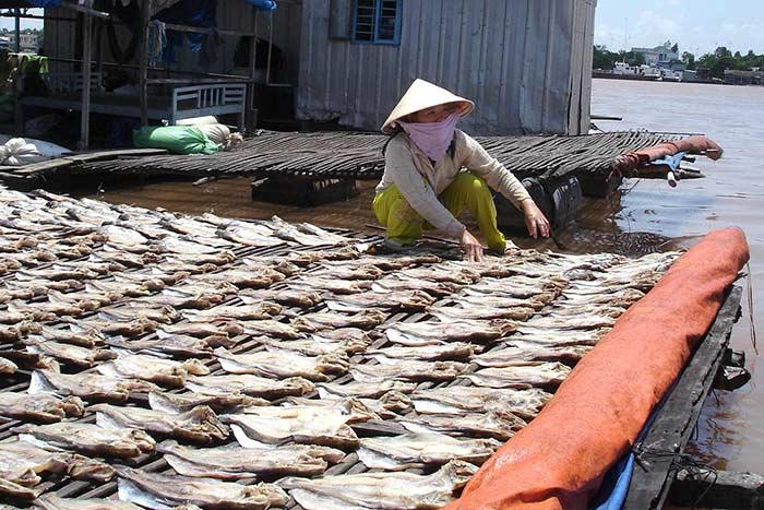 Pesca en el delta de mekong ir a vietnam en octubre y noviembre