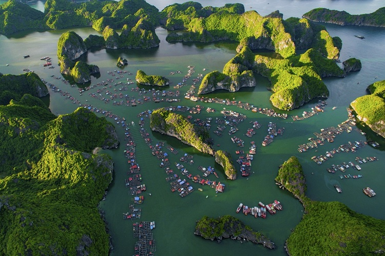Pueblo de pescadores Cai beo en Cat Ba Vietnam