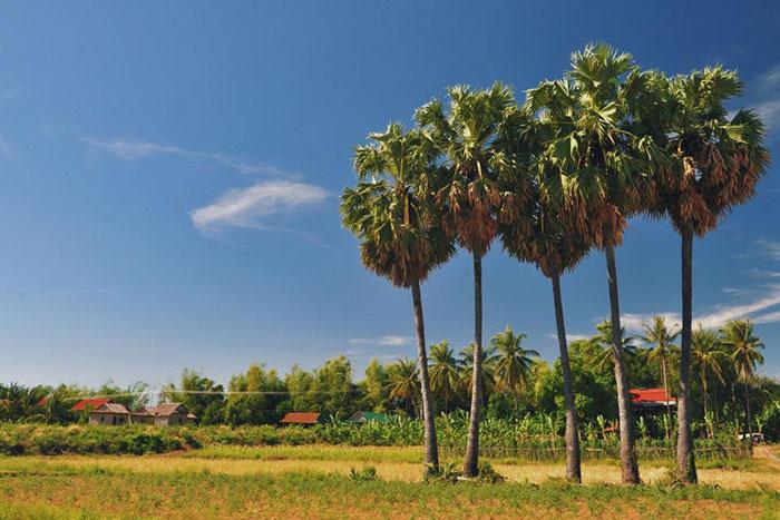 Isla de Koh Trong en Kratie Camboya
