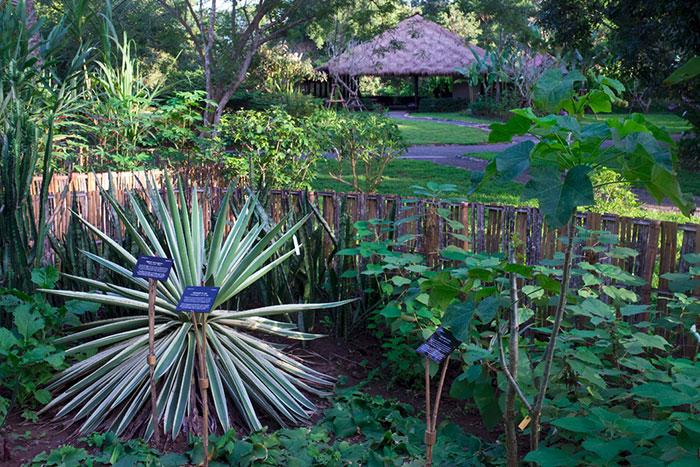 Jardin botanico de Pha Tad Ke en Luang Prabang
