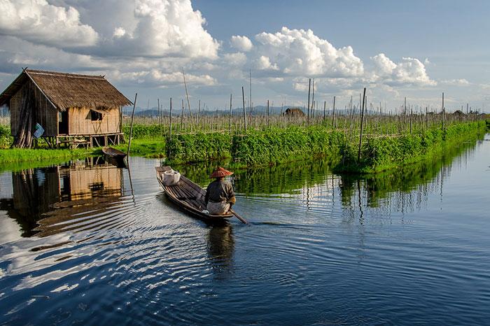 Jardin flotante en el lago Inle Myanmar