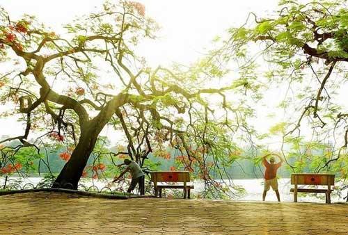 Gimnasio al aire libre en el lago hoan kiem