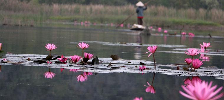 Lago en la bahia de Van Long en Ninh Binh