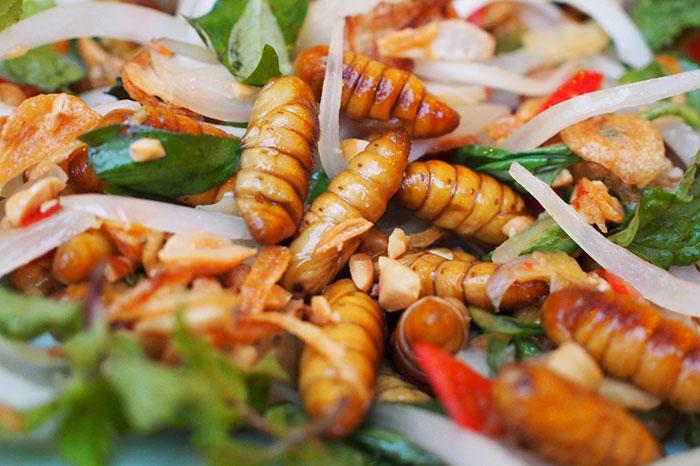 Larvas palto atipico de Laos
