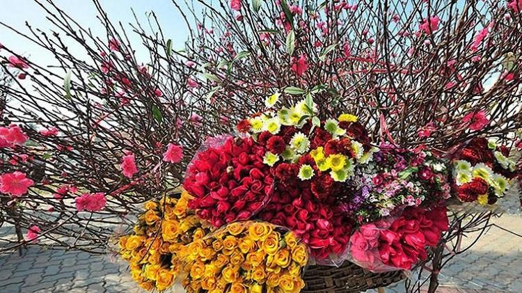 Mercado de flores de Hanoi en la festividad del Tet