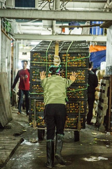 Traslado de frutas en el mercado Long Bien en Hanoi