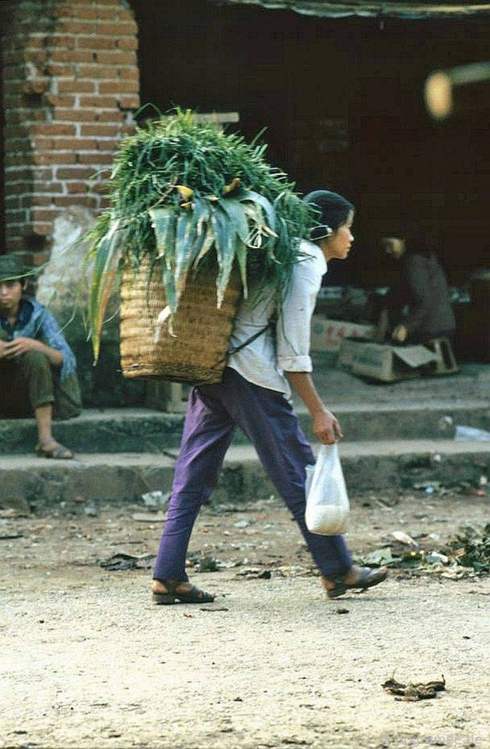 Mujer del grupo kink llevando vegetales en Sapa