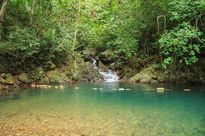 Jardin botanico del Parque Nacional Phong Nha Ke Bang