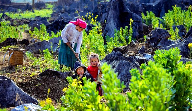 Poblacion que habita las rocas calizas en Ha Giang