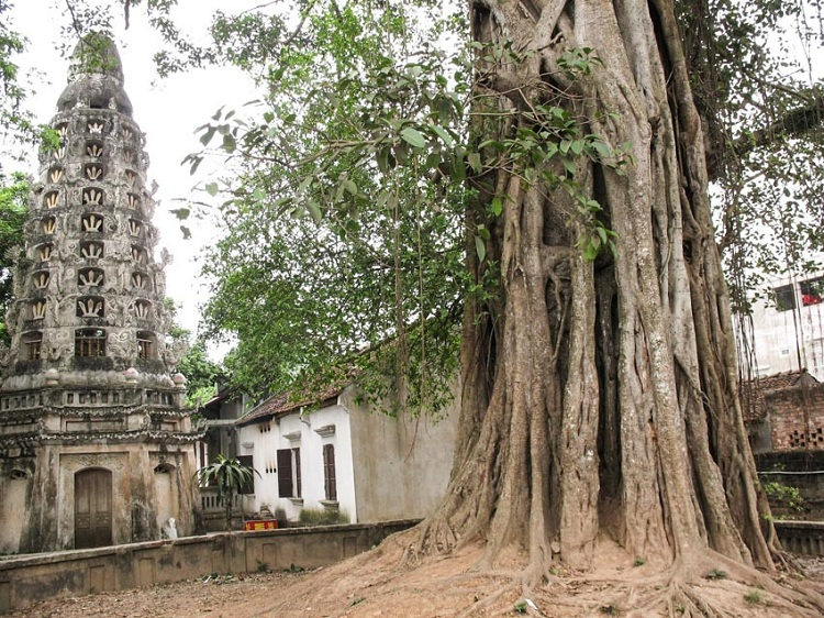 Pagoda Mia en el pueblo Duong Lam