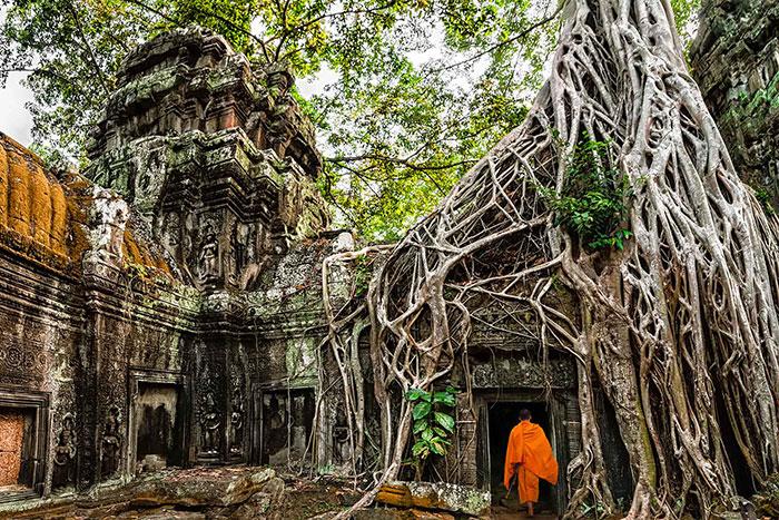 Templo Ta Prohm en Siem Reap
