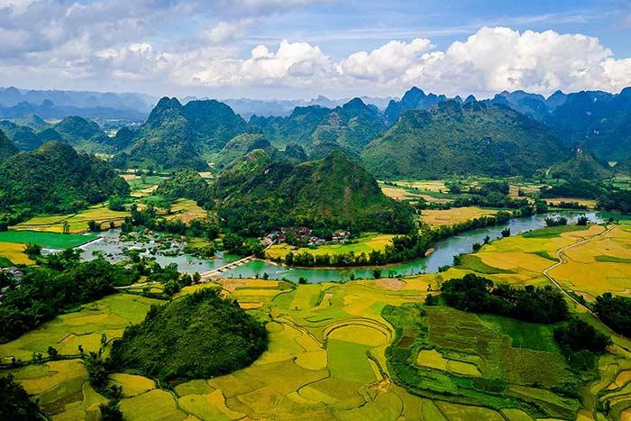Terrazas de arroz en Cao Bang
