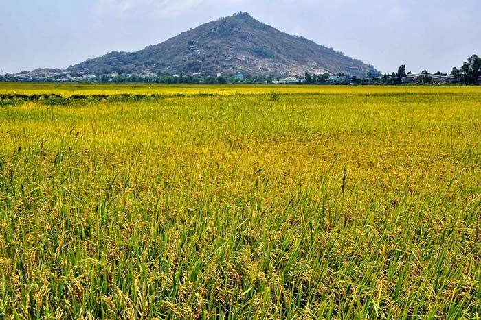 Monte Sam en el delta del Mekong Vietnam