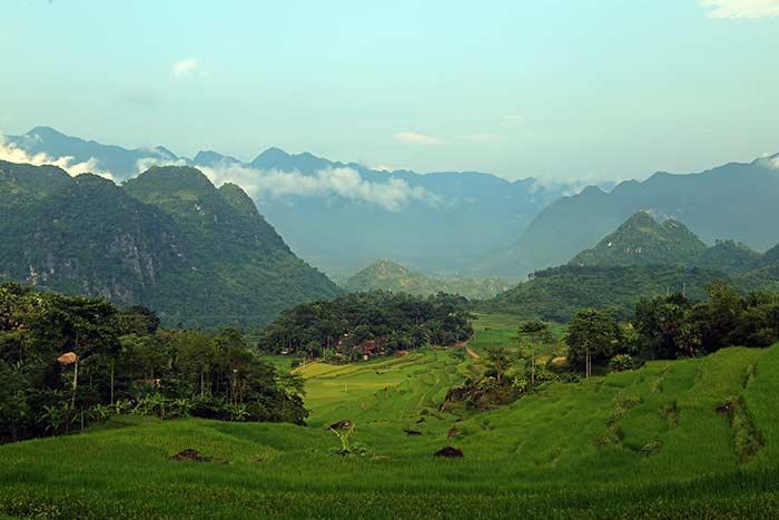 Valle arrozero de la Reserva Natural de Pu Luong