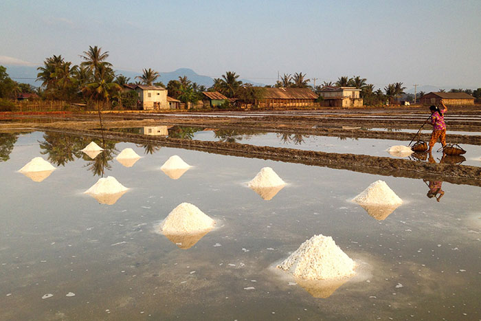 Salina de Kampot en Camboya