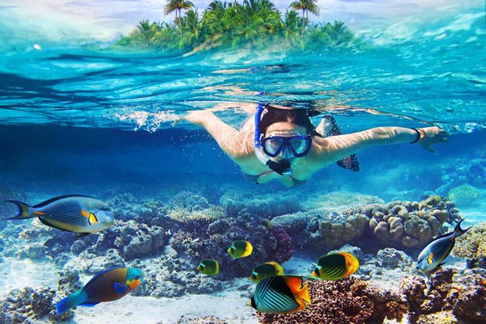Snorkel en la isla de Con Dao