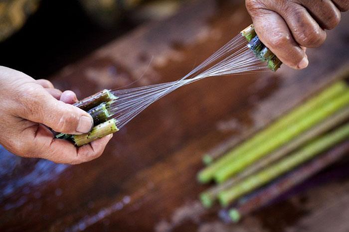 Tejido en loto en el lago Inle Myanmar