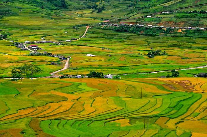 Campos de arroz en Mu Cang Chai Vietnam