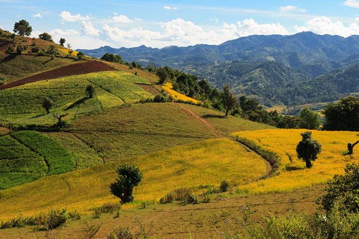 Trekking de Kalaw a Pindaya en Myanmar