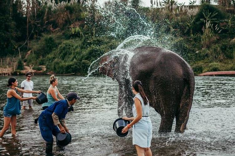 Vacaciones familiares en Laos visitar a los elefantes