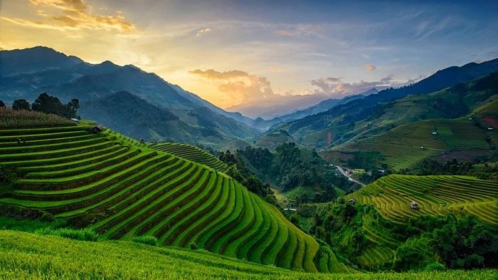 Viajar a Vietnam en julio y agosto terraza de arroz en el norte