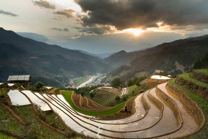 Consejos para viajar a Vietnam en mayo y junio arrozales inundados