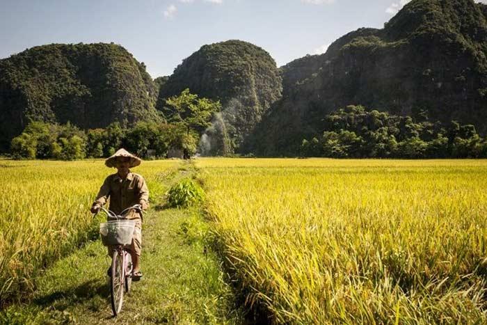 Consejos para viajar a Vietnam en mayo y junio Tam Coc