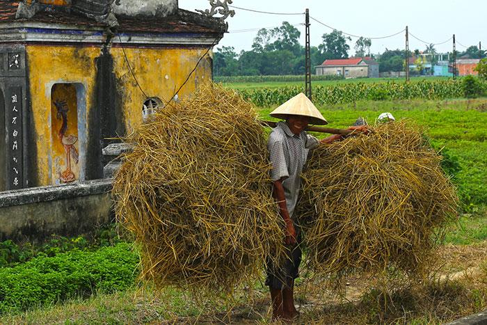 Recorrido por el campo de Hue en bicicleta Vietnam