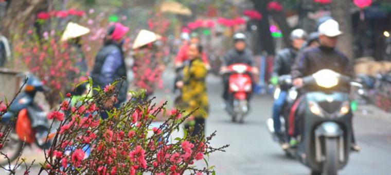 Mercado de flores en dias festivos Vietnam
